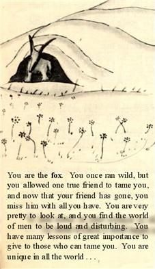 The Little Prince. You are the fox. You have many lessons of great importance to give to those who can tame you. You are unique in all the world.