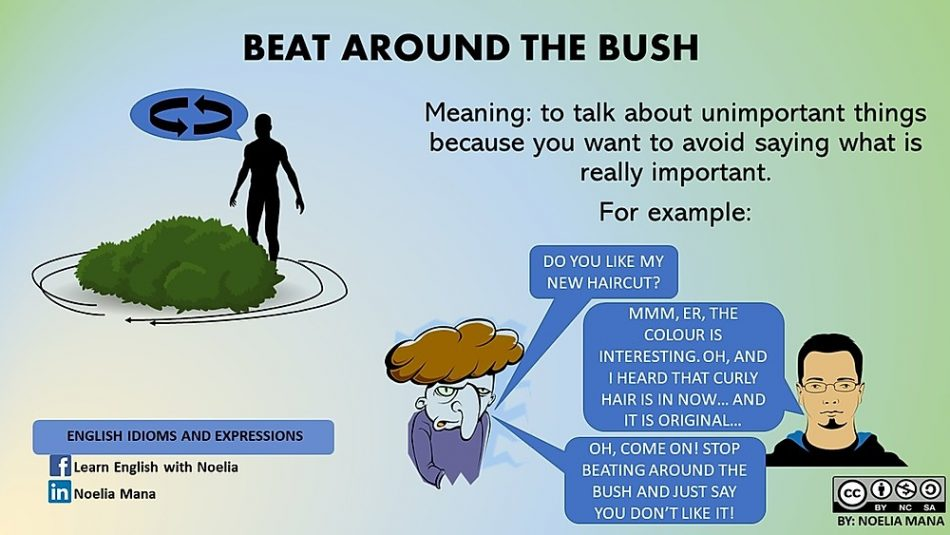 Beat Around The Bush Justice Versus Conscience
